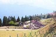 Thăm Cingjing Farm- Một Thụy Sĩ Thu Nhỏ Giữa Lòng Đài Loan