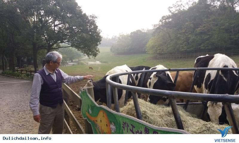 Du lịch nông nghiệp Đài Loan phát triển vượt bậc